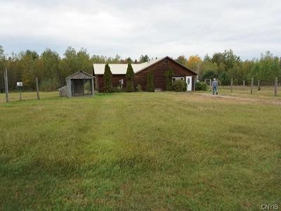St Lawrence County Single Family Home A-Active: 471 County Route 49