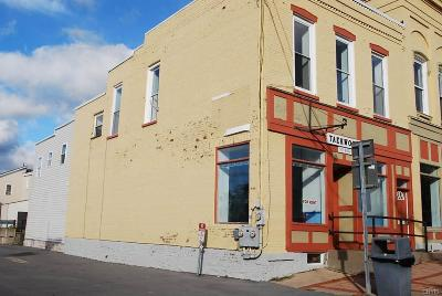 Mexico Commercial For Sale: 3280 Main Street