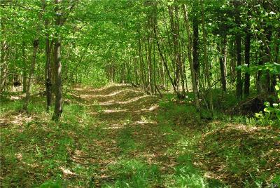 Remsen Residential Lots & Land C-Continue Show: Lot#2 (Aka Jeep Trail Rd) Wild River Forest Sbdv #2