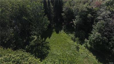 Jefferson County, Lewis County, St Lawrence County Residential Lots & Land A-Active: 5716 Windmill Way