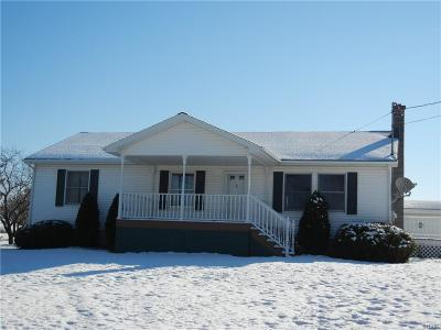 Denmark NY Single Family Home A-Active: $139,900