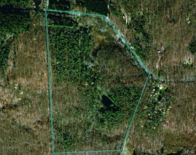 Residential Lots & Land A-Active: 702 Beaver Meadow Road