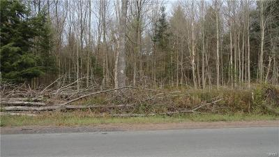 Lowville NY Residential Lots & Land A-Active: $25,000