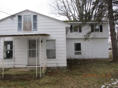 Hannibal Single Family Home A-Active: 19 Rochester Street