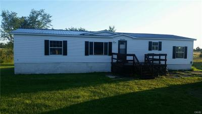 Alexandria NY Single Family Home A-Active: $89,900
