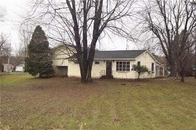 Jefferson County Single Family Home A-Active: 23634 Us Route 11