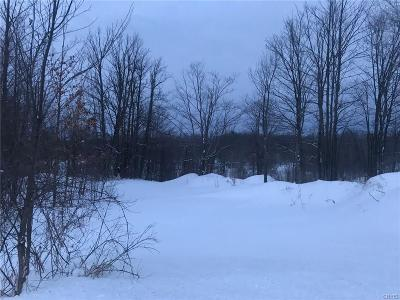 Jefferson County, Lewis County, St Lawrence County Residential Lots & Land A-Active: Sayre Road