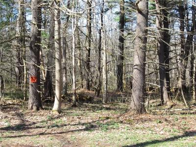 Cazenovia Residential Lots & Land A-Active: West Lake Road