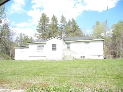 Lewis County Single Family Home A-Active: 5334 Greig Road