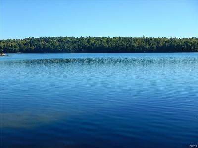 Residential Lots & Land A-Active: Grass Lake Road