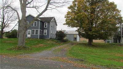 Lowville Single Family Home A-Active: 6643 East Road Extension