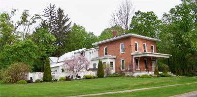 Lowville Single Family Home A-Active: 7639 Easton Street