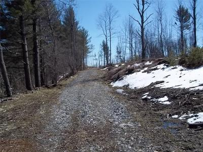 Jefferson County, Lewis County, St Lawrence County Residential Lots & Land A-Active: Old State Rd