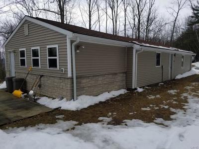 Rathbone NY Single Family Home A-Active: $64,900
