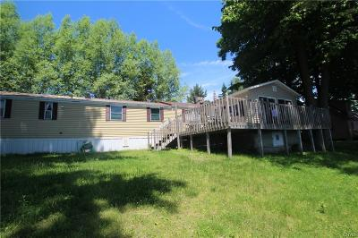 St Lawrence County Single Family Home A-Active: 3466 County Route 6