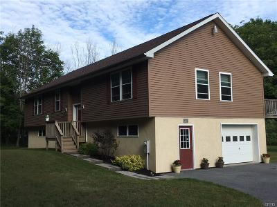 Clayton Single Family Home C-Continue Show: 16752 County Route 181