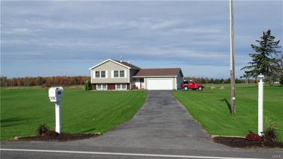 Le Ray Single Family Home A-Active: 32313 County Route 30