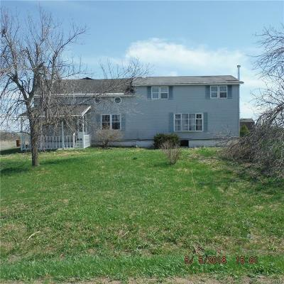 Cape Vincent NY Single Family Home A-Active: $69,500