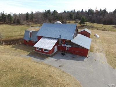 St Lawrence County Single Family Home A-Active: 452 Garrison Road