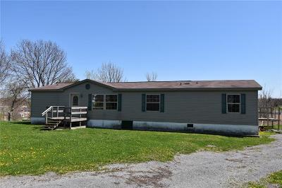 Cape Vincent NY Single Family Home A-Active: $89,900