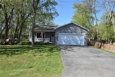 Cape Vincent Single Family Home A-Active: 8276 Catfish Point Road