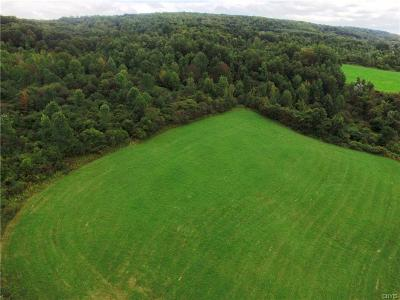 Cazenovia Residential Lots & Land A-Active: Route 20 W