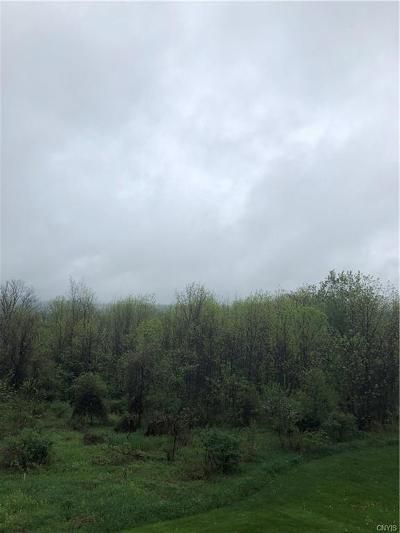 Cazenovia Residential Lots & Land A-Active: Lot 2 Route 20 W