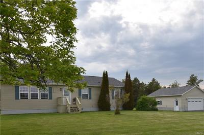 Cape Vincent Single Family Home A-Active: 34027 Hell Street