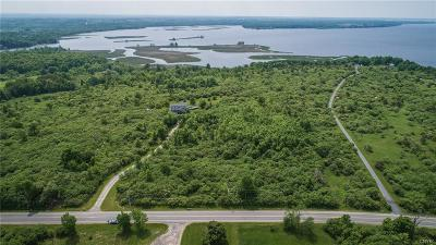Residential Lots & Land A-Active: Lot # 5 County Route 59