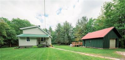 Castorland NY Single Family Home C-Continue Show: $119,000