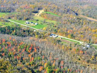 St Lawrence County Residential Lots & Land A-Active: 2460 County Route 11