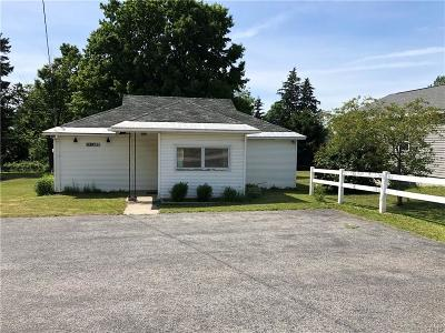 Jefferson County, Lewis County, St Lawrence County Commercial For Sale: 13413 Us Route 11 Highway