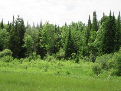 Boonville Residential Lots & Land U-Under Contract: 00 Dorn Road