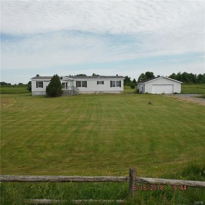 Single Family Home For Sale: 25587 County Route 16