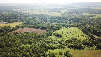 Cazenovia Residential Lots & Land A-Active: 0000 Summerfield Road