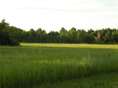 Residential Lots & Land A-Active: 24845 Sanford Corners Road