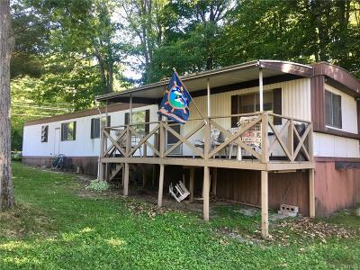 Clayton Single Family Home A-Active: 38183 Nys Rt 12 Nys Rt 12