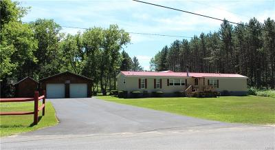 Natural Bridge NY Single Family Home A-Active: $125,900