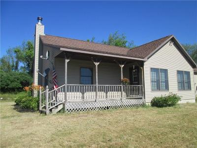 St Lawrence County Single Family Home For Sale: 1776 County Route 19