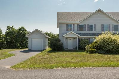 Lowville Single Family Home A-Active: 7442 Emi Lane