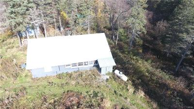 Copenhagen NY Single Family Home C-Continue Show: $115,000