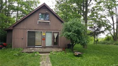 Single Family Home A-Active: 5432 Nys Route 12e