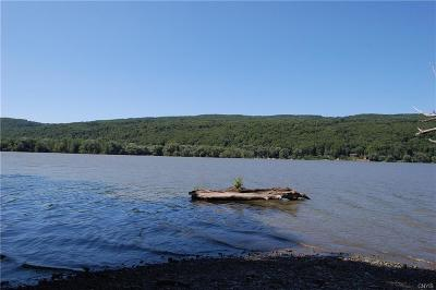 Residential Lots & Land A-Active: Otisco Valley Road