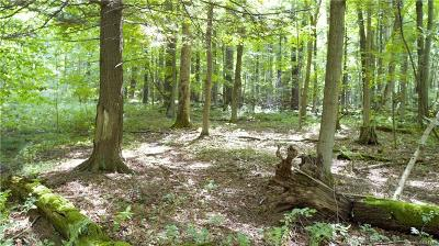 Cazenovia Residential Lots & Land A-Active: Lot 1 West Lake Road