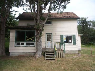 St Lawrence County Single Family Home A-Active: 487 Oswegatchie Trail Road