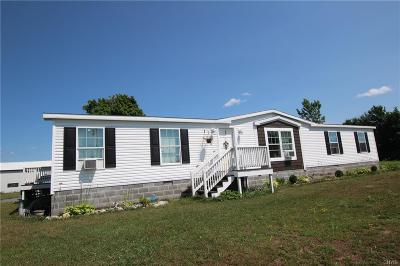 Single Family Home A-Active: 23280 County Route 47