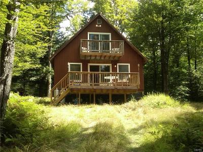 Forestport Single Family Home A-Active: 169 Little Beaver Lake Rd Road