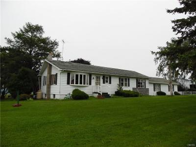 Lowville Single Family Home A-Active: 8212 State Route 26