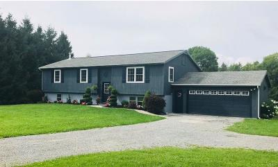 Cazenovia Single Family Home A-Active: 2651 Hardscrabble Road