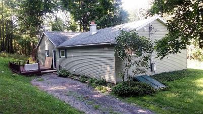 Cazenovia Single Family Home A-Active: 2158 Reservoir Road